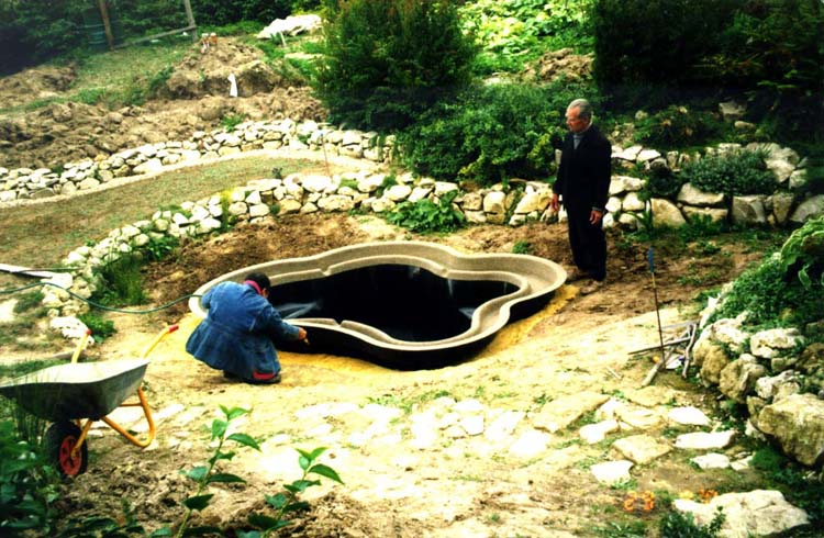 Дом, сад и пруд в саду.... - фото 8