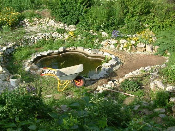 Дом, сад и пруд в саду.... - фото 10