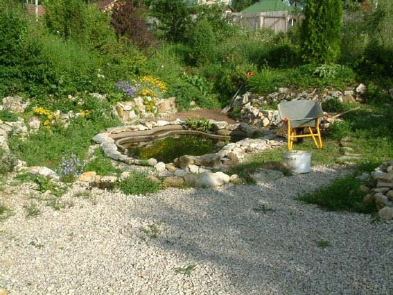 Дом, сад и пруд в саду.... - фото 11