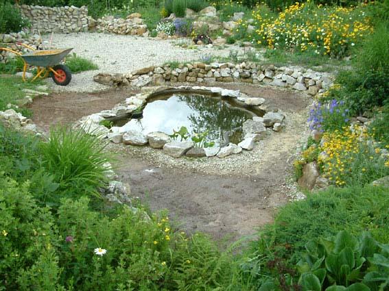 Дом, сад и пруд в саду.... - фото 12