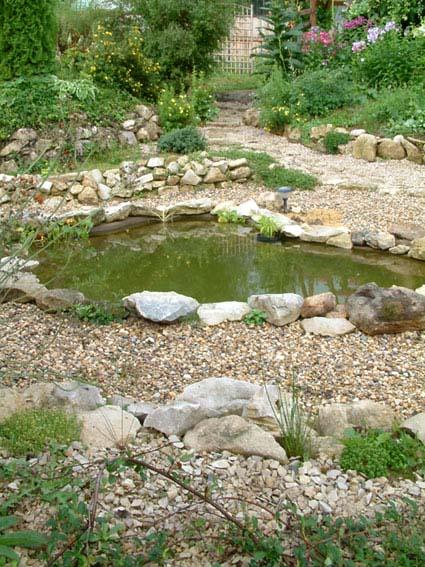 Дом, сад и пруд в саду.... - фото 18