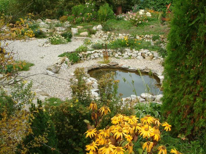 Дом, сад и пруд в саду.... - фото 19