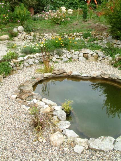 Дом, сад и пруд в саду.... - фото 21
