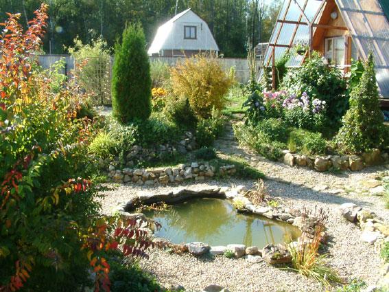 Дом, сад и пруд в саду.... - фото 22