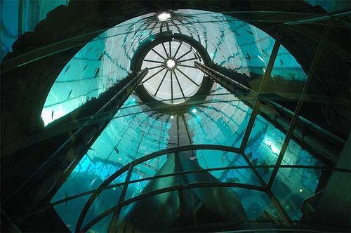 Aquadom самый большой аквариум в европе