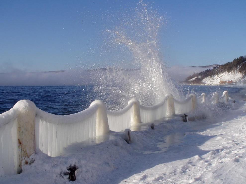 http://animalworld.com.ua/images/2009/December/Eco/Bajkal/Bajkal_12.jpg