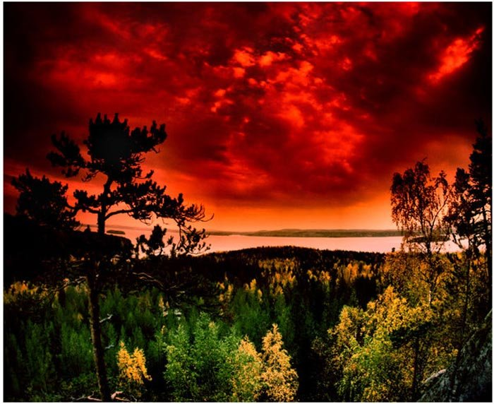 Фотопозитив красивая природа
