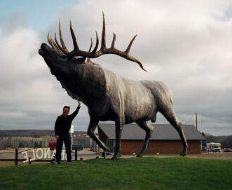 Статуя лося в Швеции, на вершине горы Витхаттен.