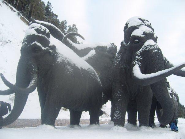 Памятник мамонтам в Ханты-Мансийске
