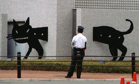 кошка и стена