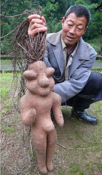 Китайский фермер откопал у себя в саду «голого мальчика»