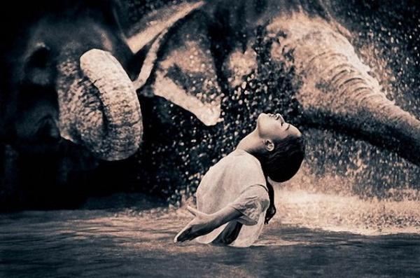 Серия фотографий от Gregory Colbert на тему «Человек и природа».