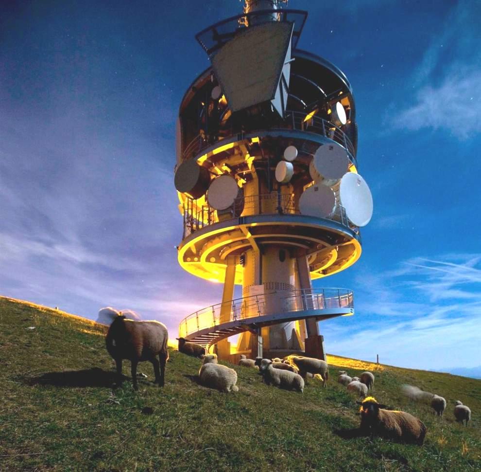 Овцы собрались вокруг телекоммуникационной башни на горе. Рига в центральной Швейцарии.