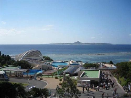 Океанариум «Окинава Тюрауми» (Okinawa Churaumi Aquarium) — второй по величине аквариум в мире…