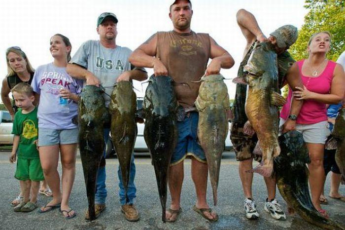 как поймать больше рыбы на соревнованиях