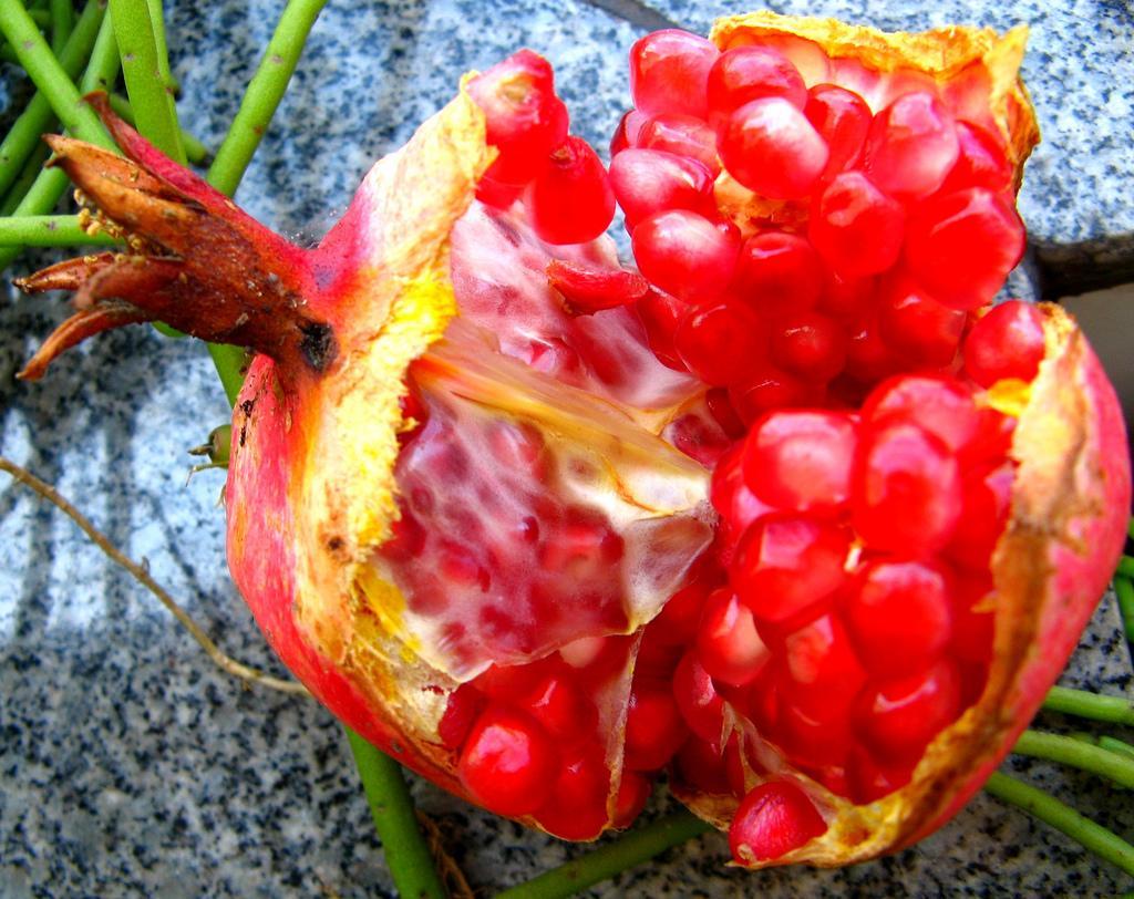 Гранат или пуническое яблоко