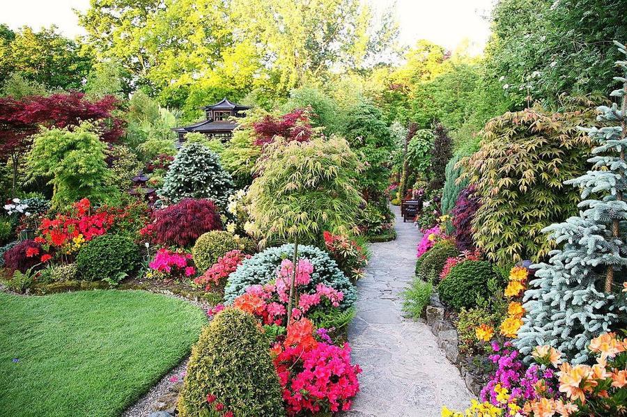 Как создать английский сад 2