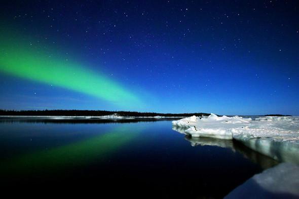 Космос подводного мира в фотографиях Александра Семенова