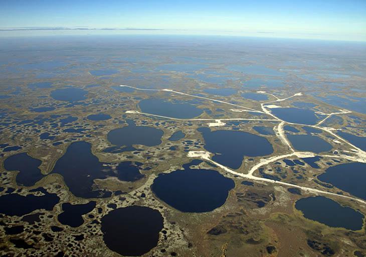 Большое Васюганское болото.