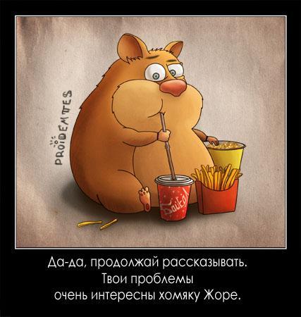 Необычный взгляд на простые вещи от ...: animalworld.com.ua/news/Smeshnyje-zverushki-ot-Apofigeja-Projdjomtes