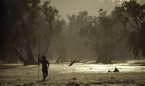 Болотные равнины какаду австралия