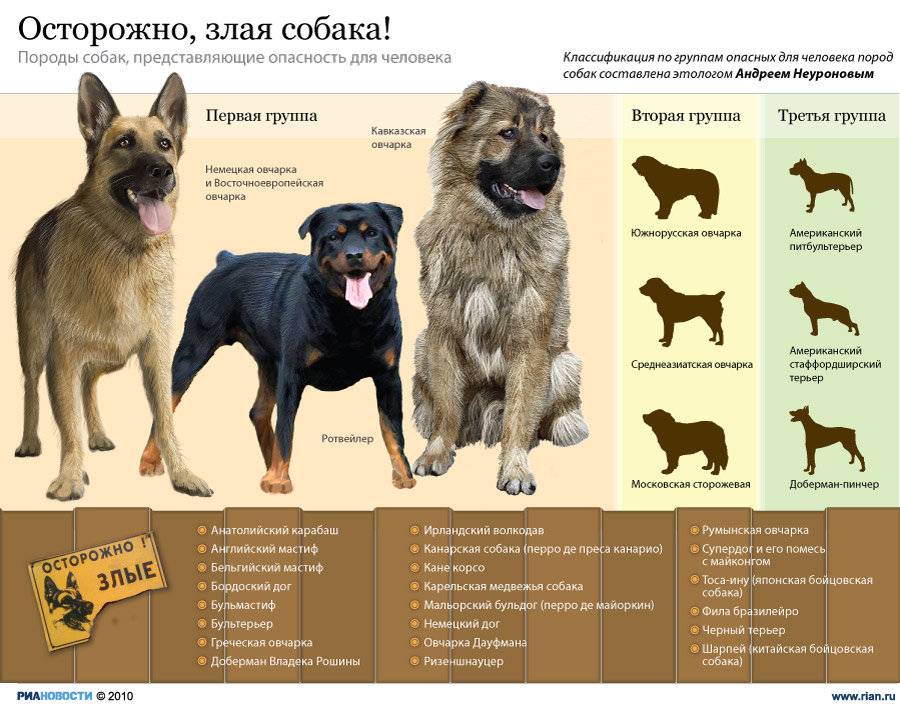 Опасные для человека породы собак