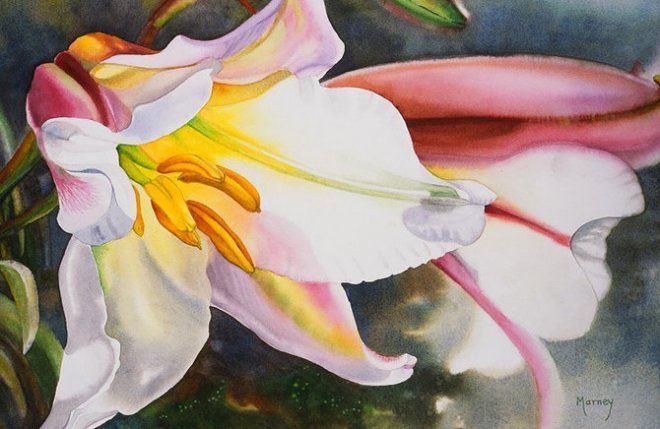 Цветы акварелью от Marney Ward