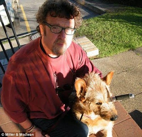 Собака Белла выжила после ножевого ранения в голову Bella2