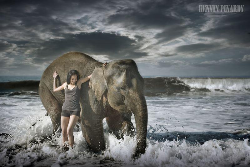 http://animalworld.com.ua/images/2011/December/Foto/Pinardy/Pinardy_15.jpg