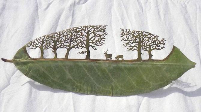 Резьба по листьям растений от лоренцо