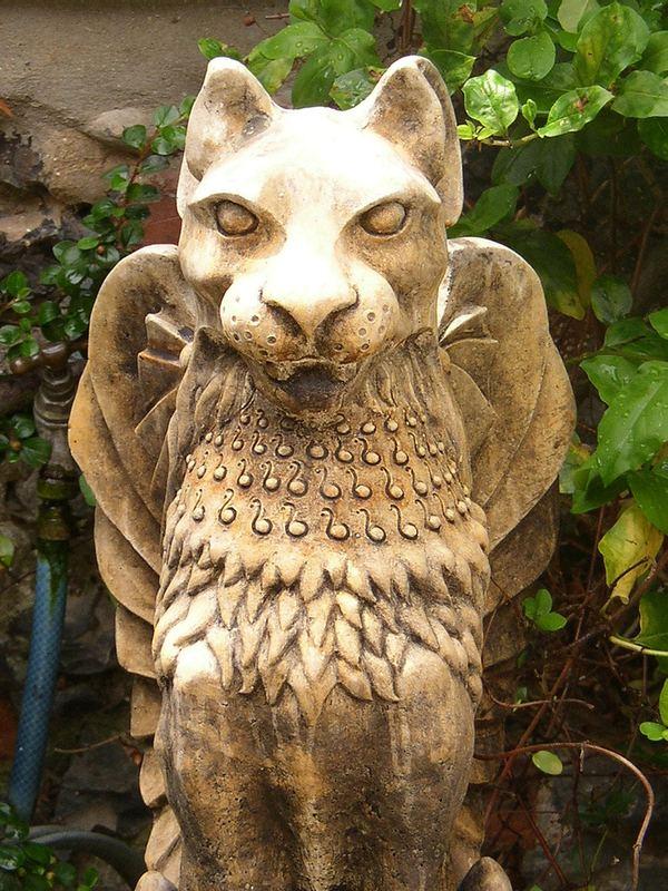 Крылатые кошки (Winged cat)