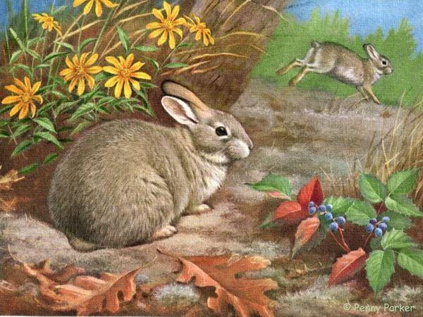 """Схема вышивки  """"Осенние кролики """" ."""