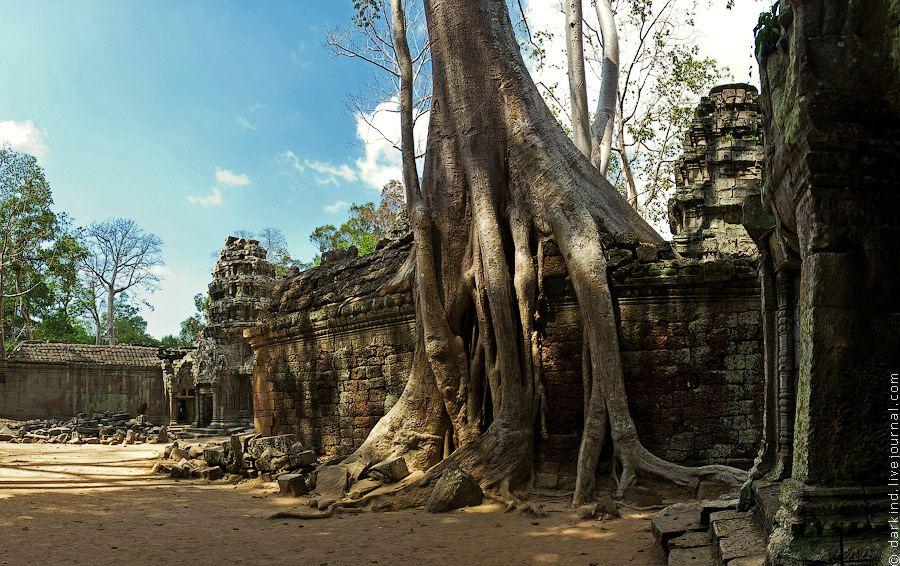 Гармония дерева и камня храма