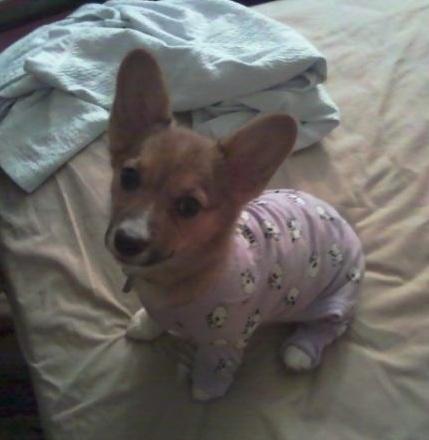 Очень нравится отдыхать в пижамах
