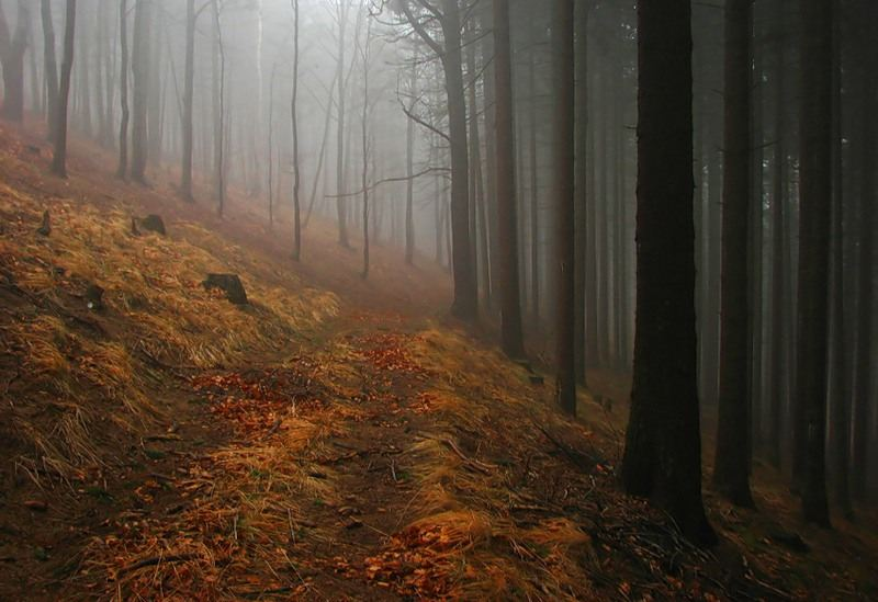 Пейзажи от фотографа Marek Jedzer