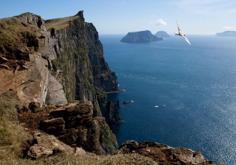 Прно на необитаемом острове 22 фотография
