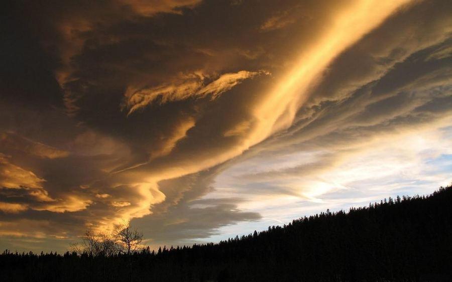 http://animalworld.com.ua/images/2011/November/Eco/Oblaka/Oblaka_5.jpg