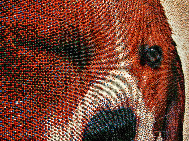 Портрет бигля из 221 тысячи сахарных шариков Joel_Brochu_pixelated_beagle_2