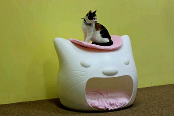 Домик для котенка фото