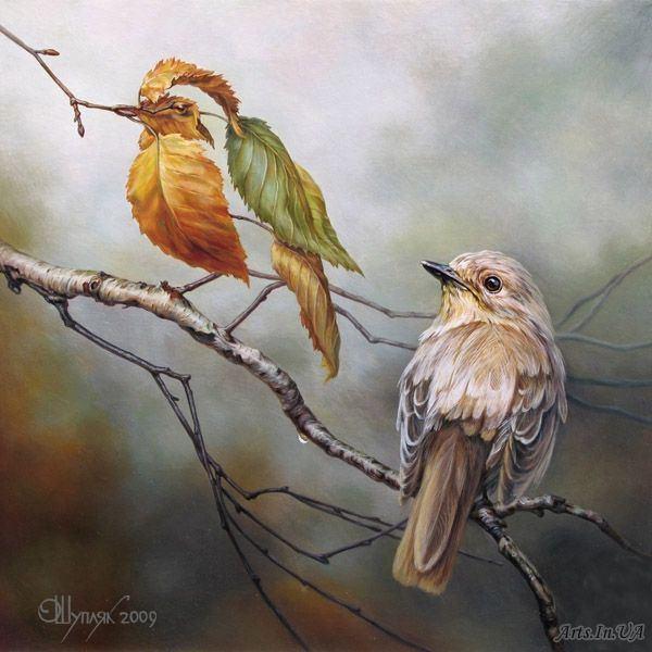 Картины - иллюзии от Олега Шупляка!