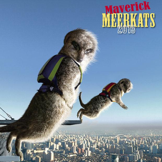 Календарь с сурикатами-экстремалами: Maverick Meerkats на 2013 год.