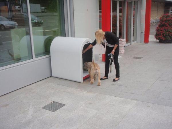 Dogbox, или парковка для собак Dogbox_1
