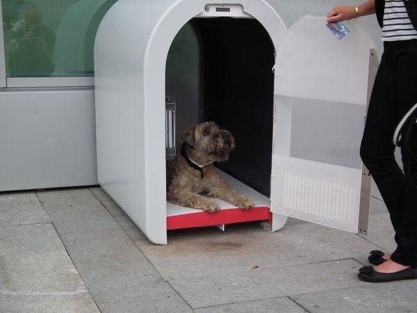 Dogbox, или парковка для собак Dogbox_2