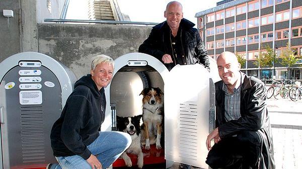 Dogbox, или парковка для собак Dogbox_6