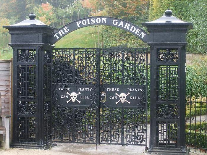 Сад Альнвика - сад самых опасных растений