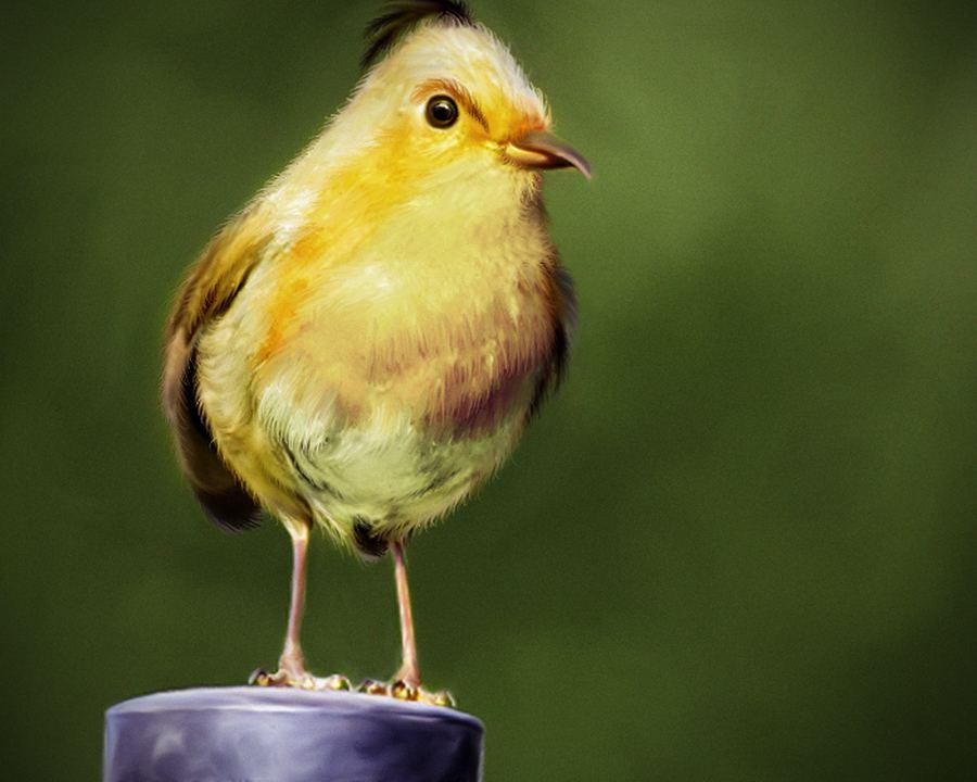 Angry Birds художника Мохамеда Рэуфа