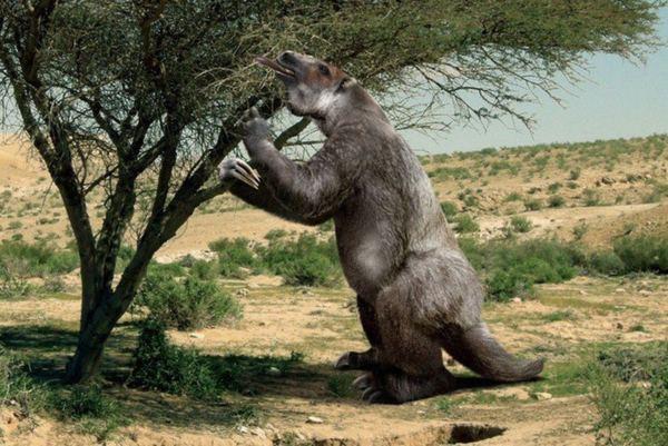 Доисторические животные гиганты
