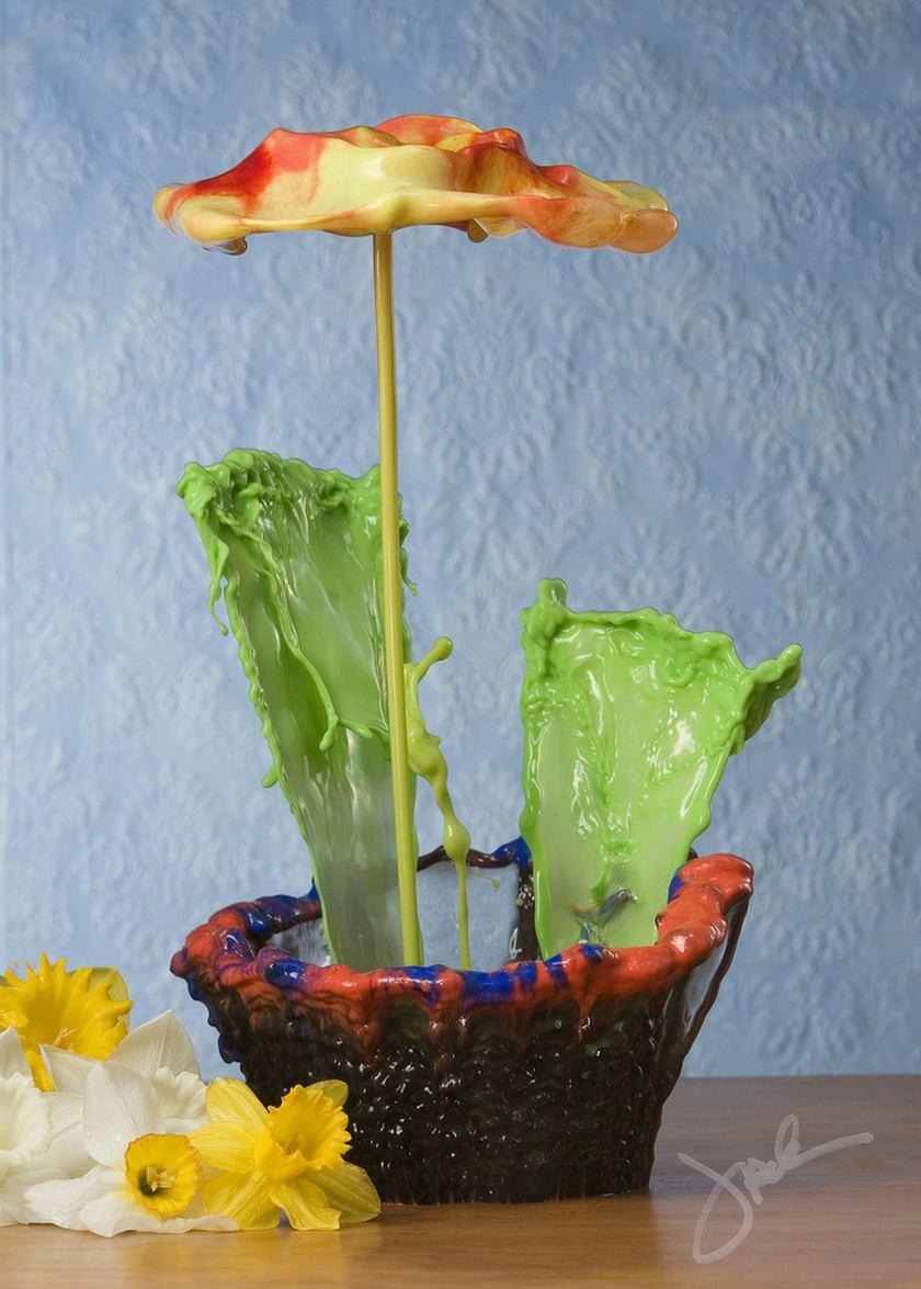 'Водяные цветы' фотографа Jack Long