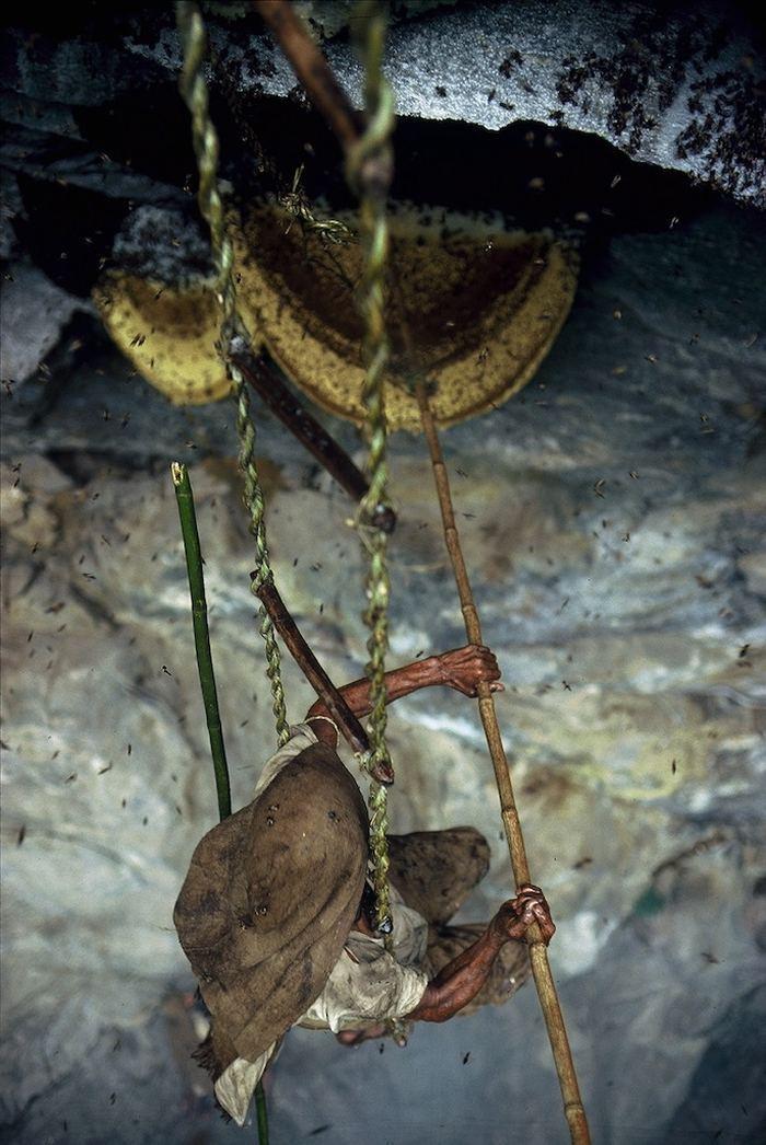 Охотники за диким мёдом в Непале