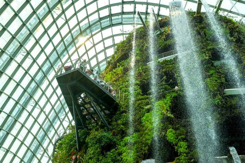 Сингапурские Сады у залива выиграли престижную награду «Здание года» на Всемирном архитектурном фестивале